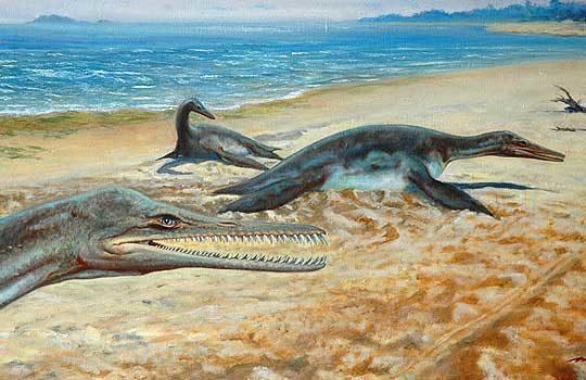 polyptychodon-5198067