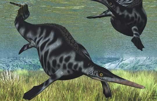 nanchangosaurus-3928166