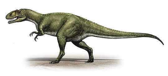 sinraptor-1952385