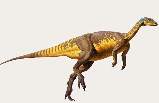 eousdryosaurus-6637754