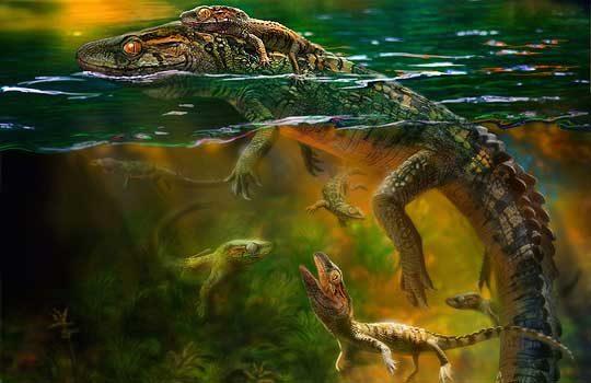 philydrosaurus-1745525