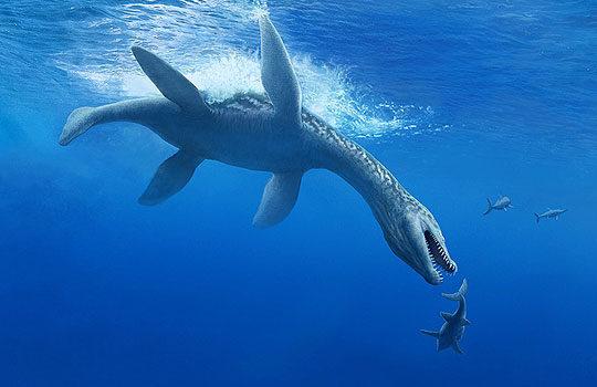 rhomaleosauridae-5967903