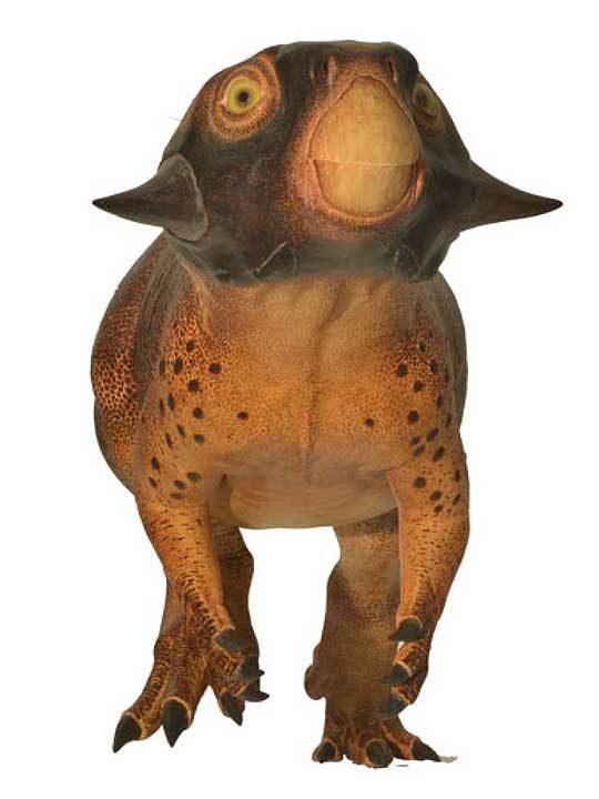 psittacosaurus2-7296179