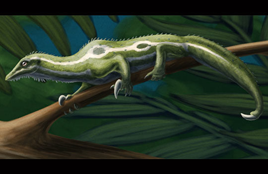 drepanosaurus1-1447827