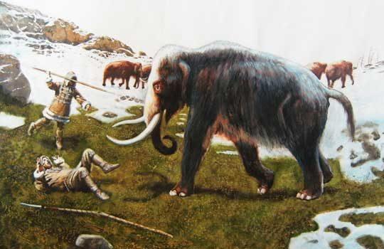 mammothdog-2874924