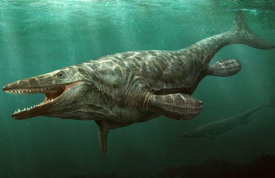 mosasaurushit-7650956