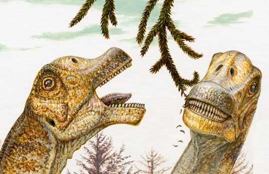 sauropodtouth-6721880