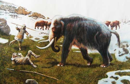 mammothdog-2942381