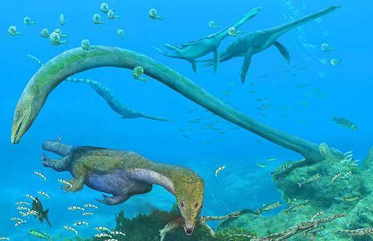 fuyuansaurus-2582133