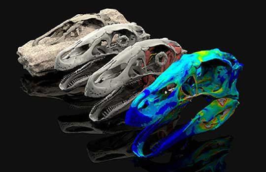 3dpaleontology-9619879