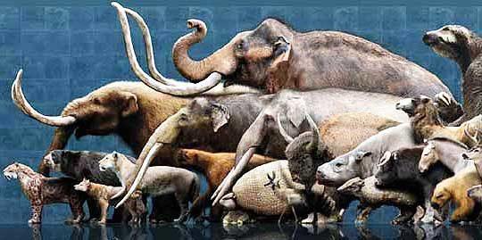 megafauna-4137725