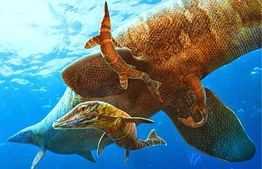 mosasaurus-7879207