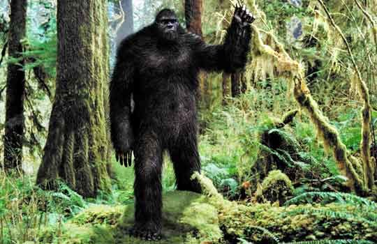 bigfoot-5152506