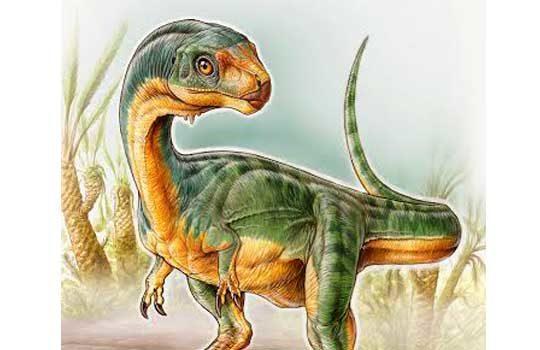 chilesaurus-1-4890766