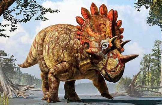 regaliceratops-9265232