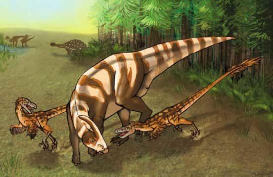 saurornitholestes-2549572