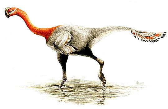 apatoraptor-8494167
