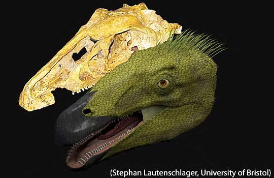 erlicosaurus-8702036