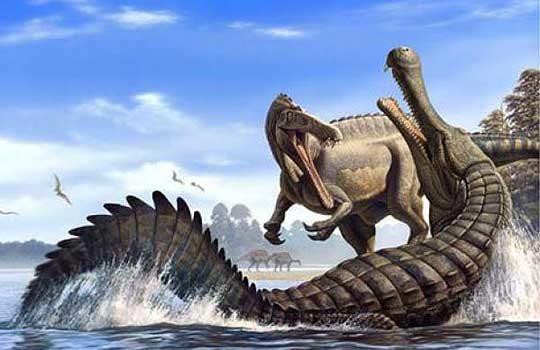 crocodile-2350753