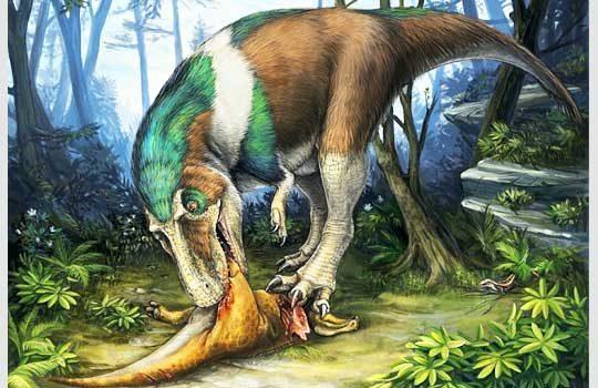 gorgosaurus-9421125