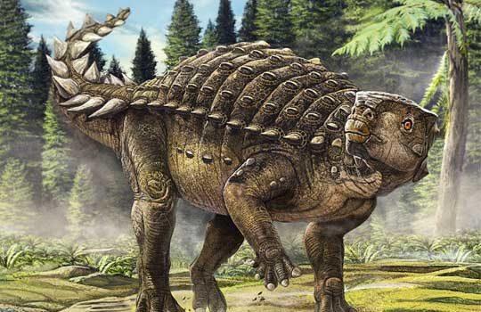 kunbarrasaurus-2850759