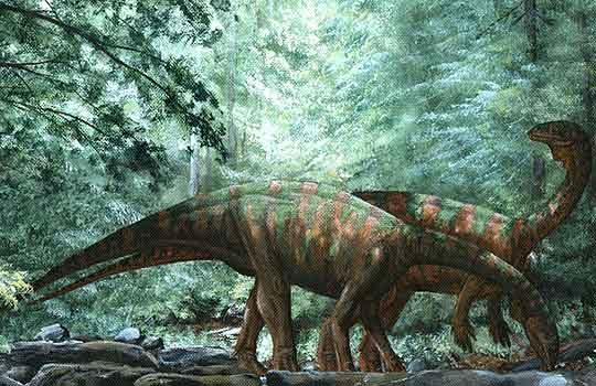 yunnanosaurus1-9159350