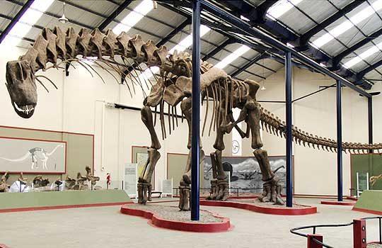 argentinosauruswalk-4258025