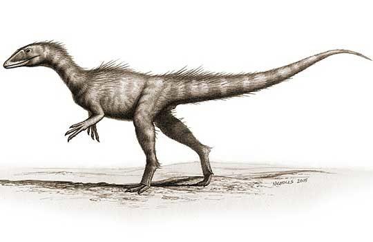 dracoraptor1-2619661