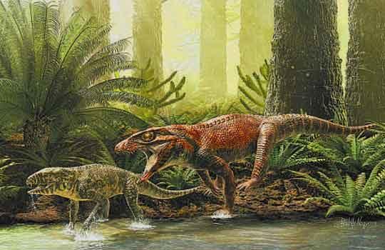 gondwanasuchus1-6213651