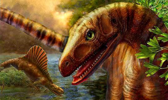 asilisaurus-1647292