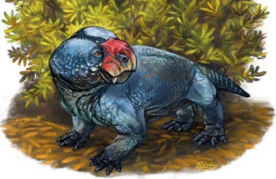 bulbasaurus-6831231
