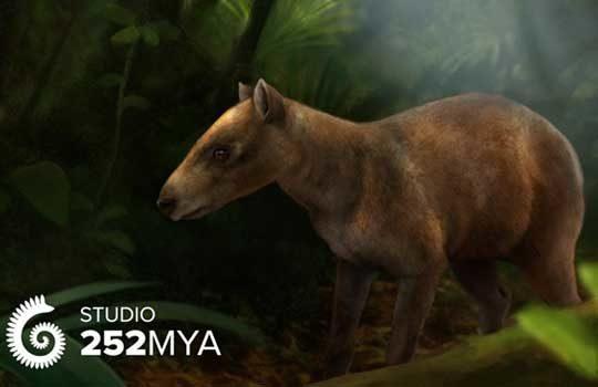 cambaytherium-3262538
