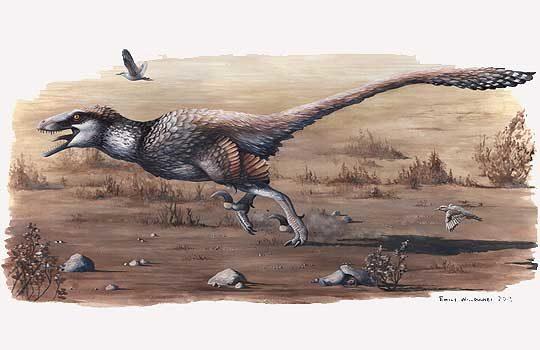 dakotaraptor-4490402
