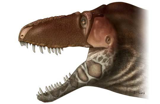 daspletosaurus-2691956