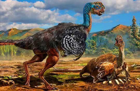 Новый пернатый динозавр   Huanansaurus ganzhouensis