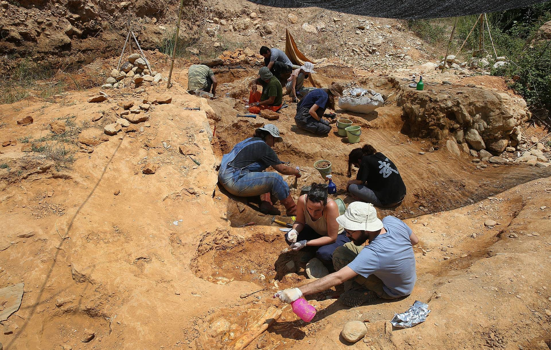 palaeontologists-are-working-on-an-excavation-in-a-river-bed-in-pikermi-attica