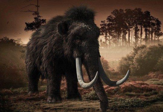 Загадочные события вызвали вымирание мамонтов с острова Врангеля