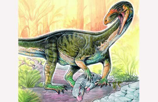Самые ранние предки динозавров передвигались как крокодилы или вараны