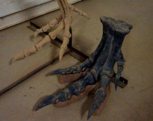 Когти птерозавров
