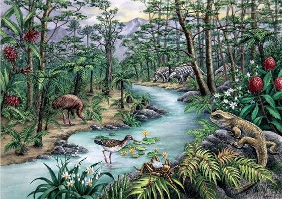 Эволюция флоры мелового периода