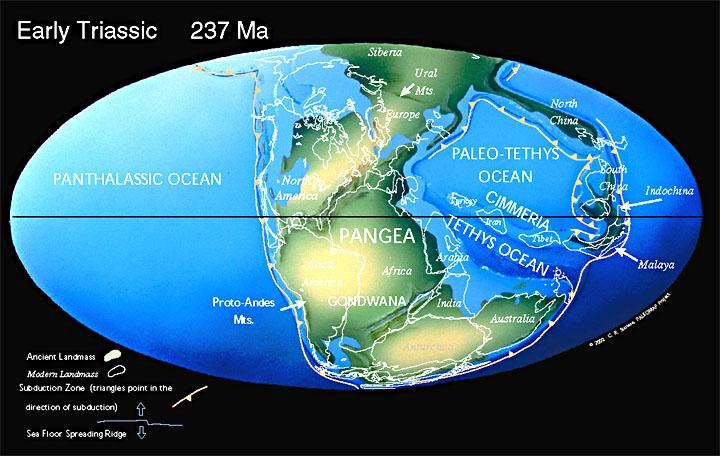 Очертания материков в триасовом периоде