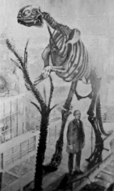 скелет гадрозавра