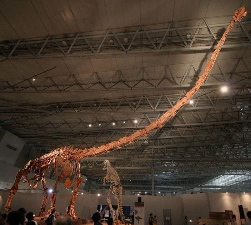Маменчизавр фото