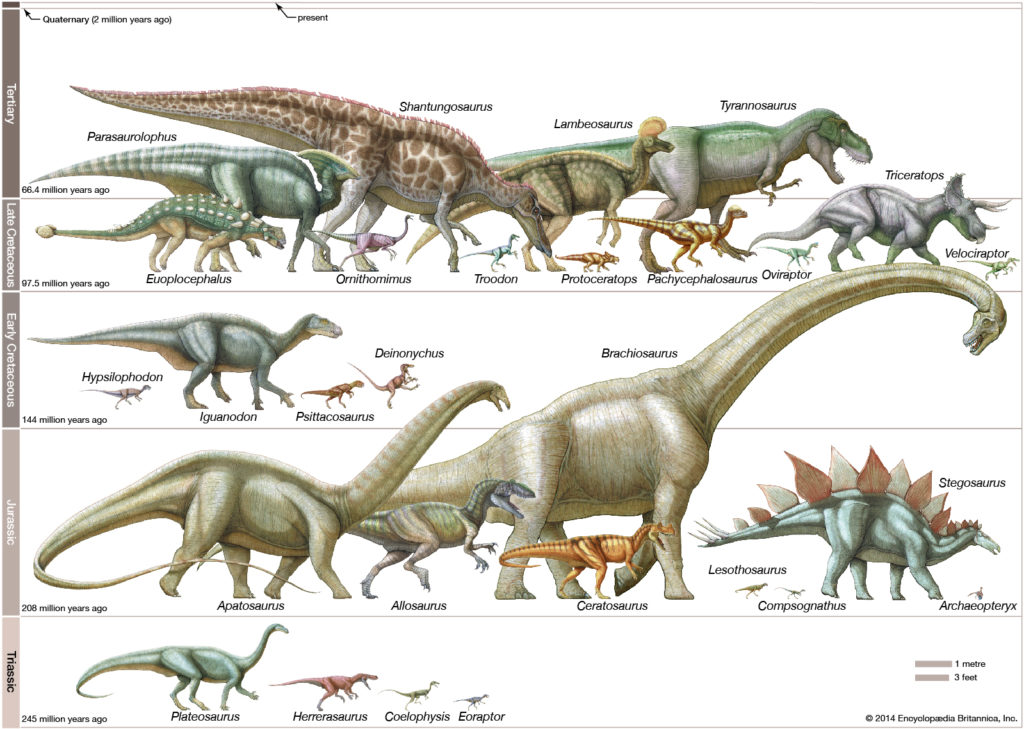 dinosar_of_mesosoic_era