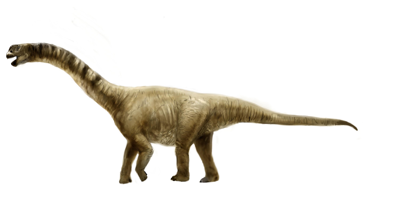 Рисунок камаразавра