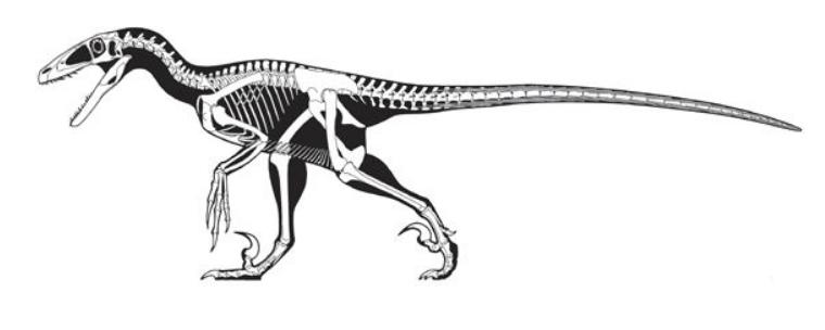 Скелет дейнониха