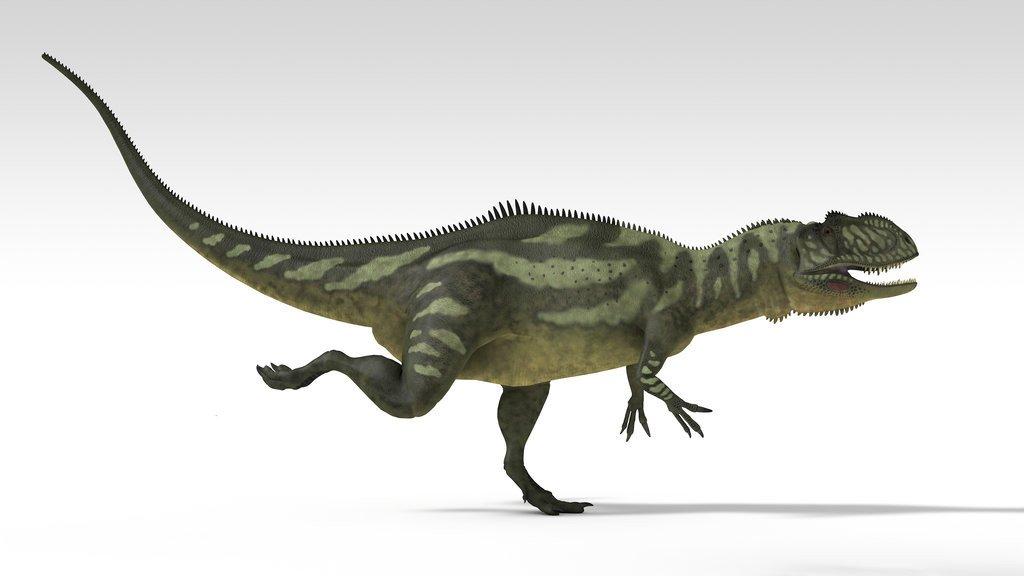 Передвижение Yangchuanosaurus