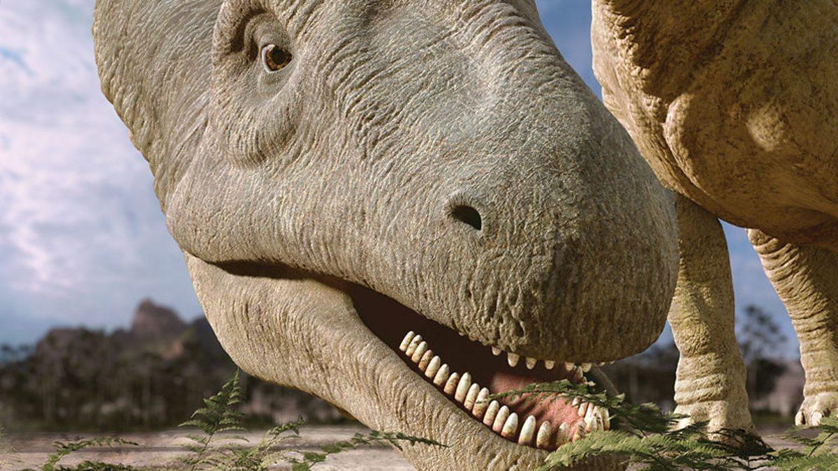 Зубы аргентинозавра