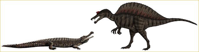 Спинозавр был в 4 раза выше саркозуха