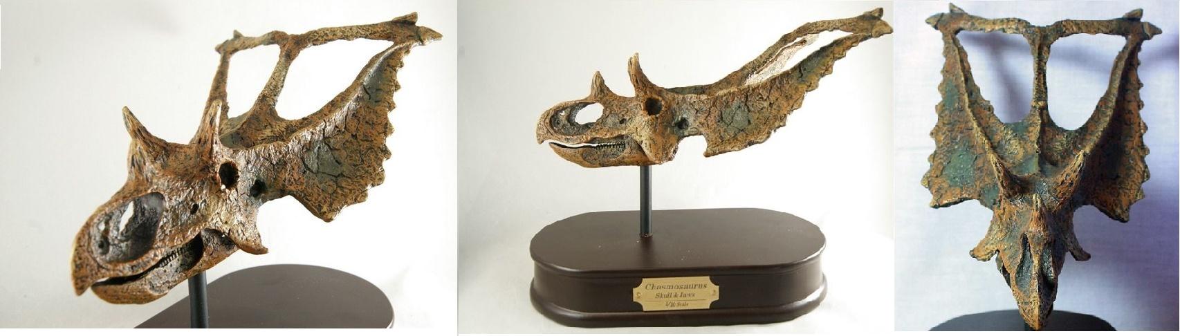Реконструкция черепа хасмозавра